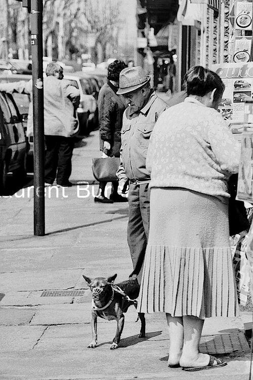 La donna con il piccolo Cane