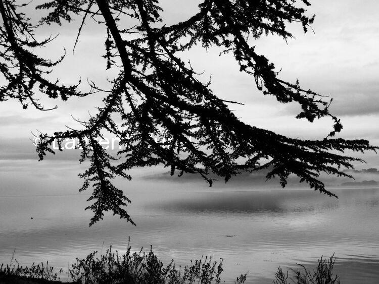 Sunday mist
