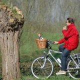 Sunday Cycle