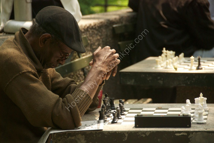 Chess Strategist in Deep Thought
