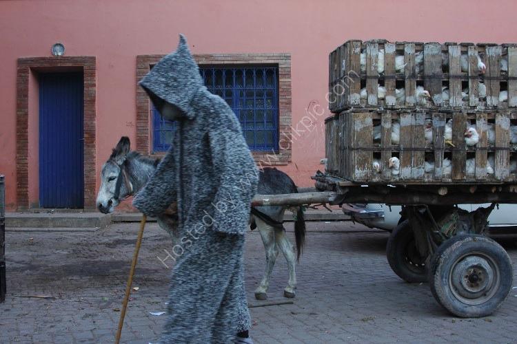 Traditional Berber Dress