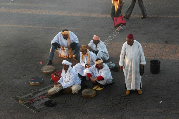 Snake Charmers At Work