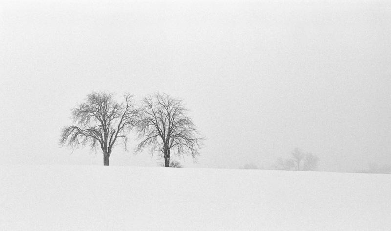Snow duet
