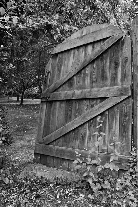 Secret orchard