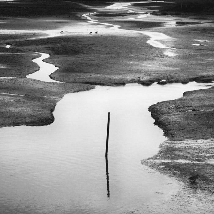 Low tide mark