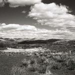 Hawkshead views