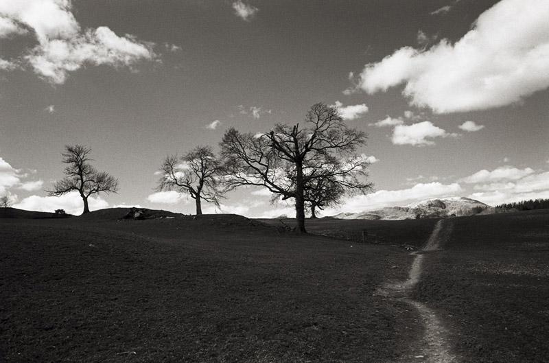 Hawkshead path