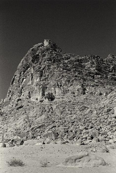 Wadi Rum - Lawrence Spring