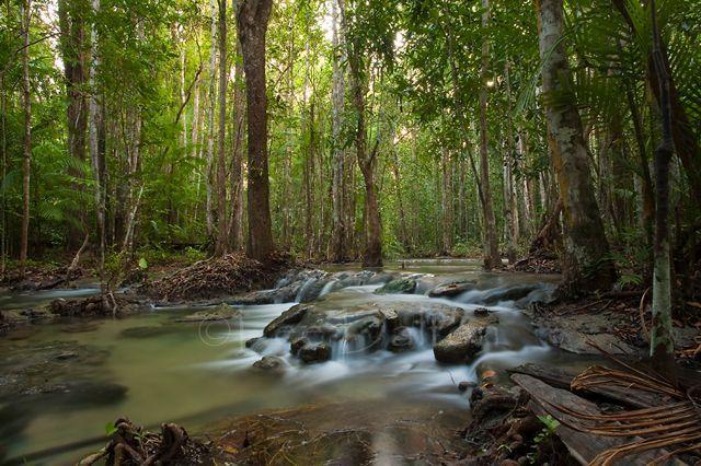 Khao Nor Chuchi Wildlife Sanctuary