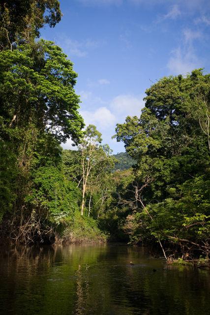 Burro-Burro river
