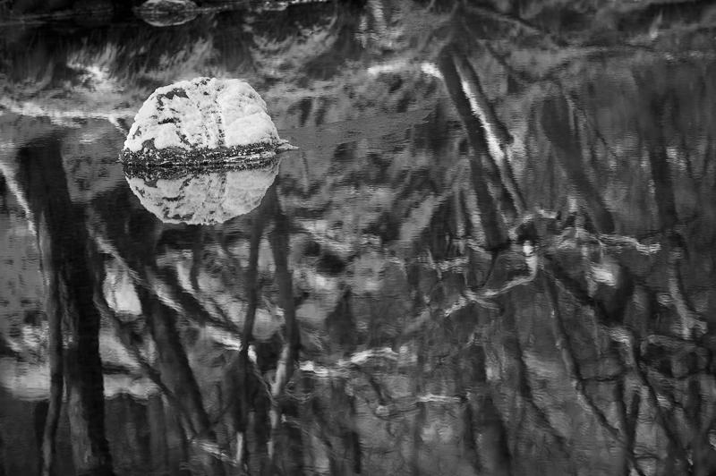 River Reflections, Grange.