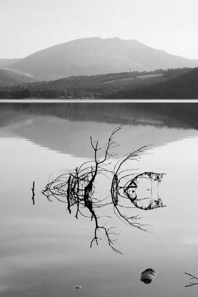 Shapes in the Water, Derwentwater.