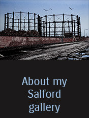 About Salford link