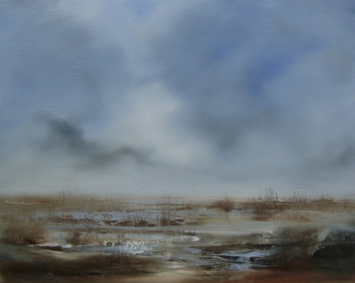 Marshland, blue and silver light