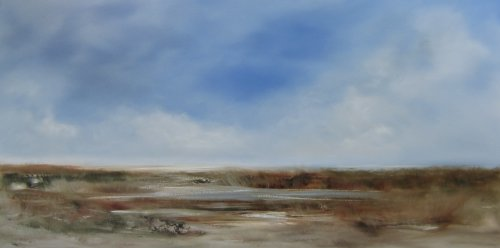 Marshland, high cloud