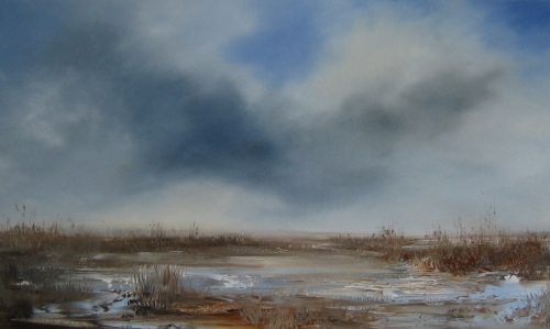 Marshland, passing cloud