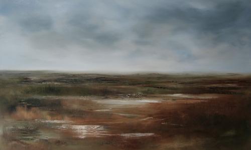 Marshland, shining water