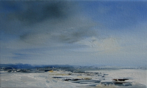Snow on the marshes
