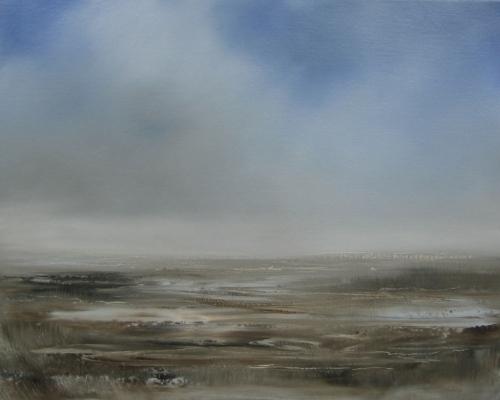 Wetland under soft cloud