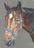 Horse II - pastel