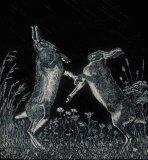 Boxing Hares - scraperboard