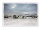 Snow Circle 01