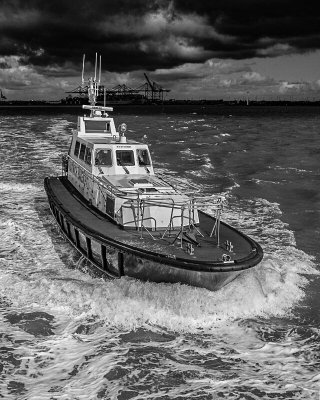 Pilot Boat Harwich Haven