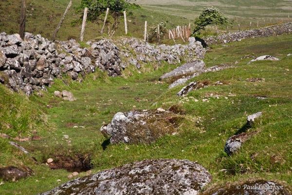 Dry stone wall, Leskernick
