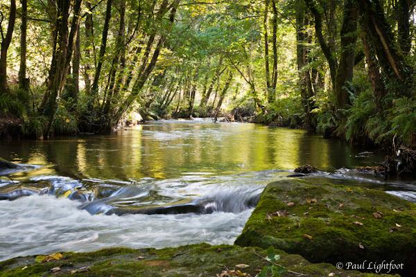River Fowey in the Glynn Valley