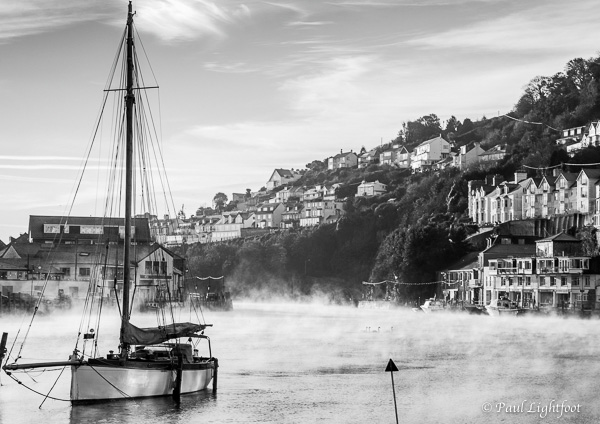 Swans in the mist, Looe