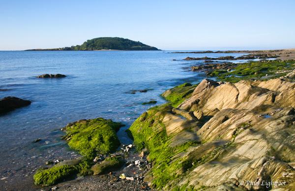 Looe Island from Hannafore