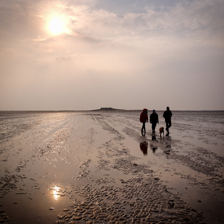 Walking back from Hilbre