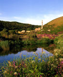 Disused Tin Mine, With Spring Flowers Reflection, Kenidjack Valley, West Cornwall, England, UK.