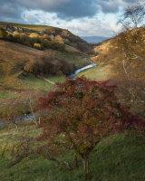 Autumn, Smardale Gill