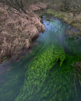 Green River, Malham Tarn Moss