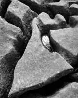 Limestone Detail, Holme Park Fell