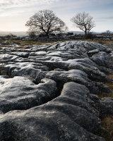Limestone Dome, Farleton Fell