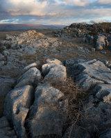 Limestone, Farleton Fell
