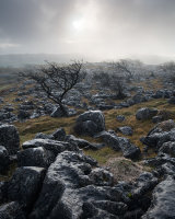 Misty Morning, Newbiggin Crags