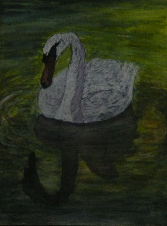 Swan on Water   (Acrylic)