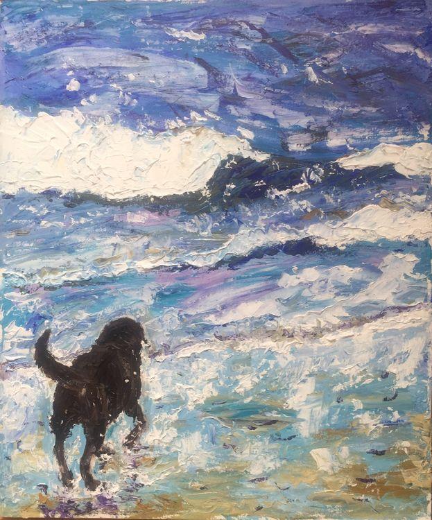 Labrador paddling in sea
