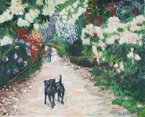 A walk through the rhododendruns