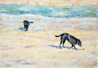 Labradors on the beach