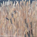Blackbird On Bulrushes