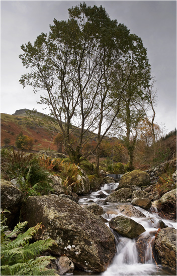 On the Path to Helvellyn