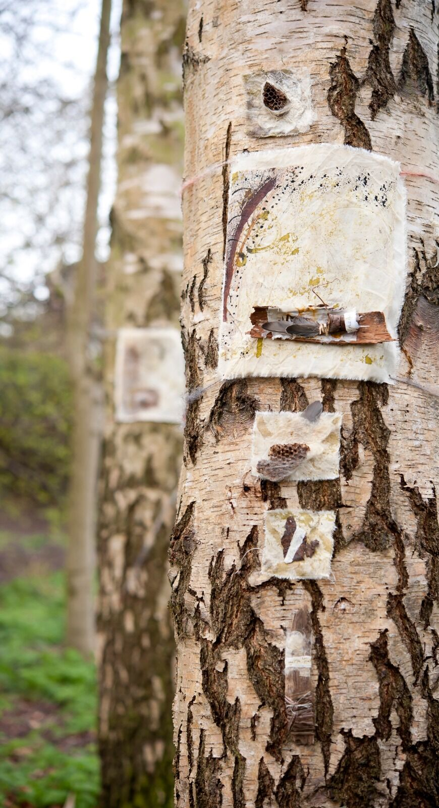 Fishpond Woods Installation 'Tokens'