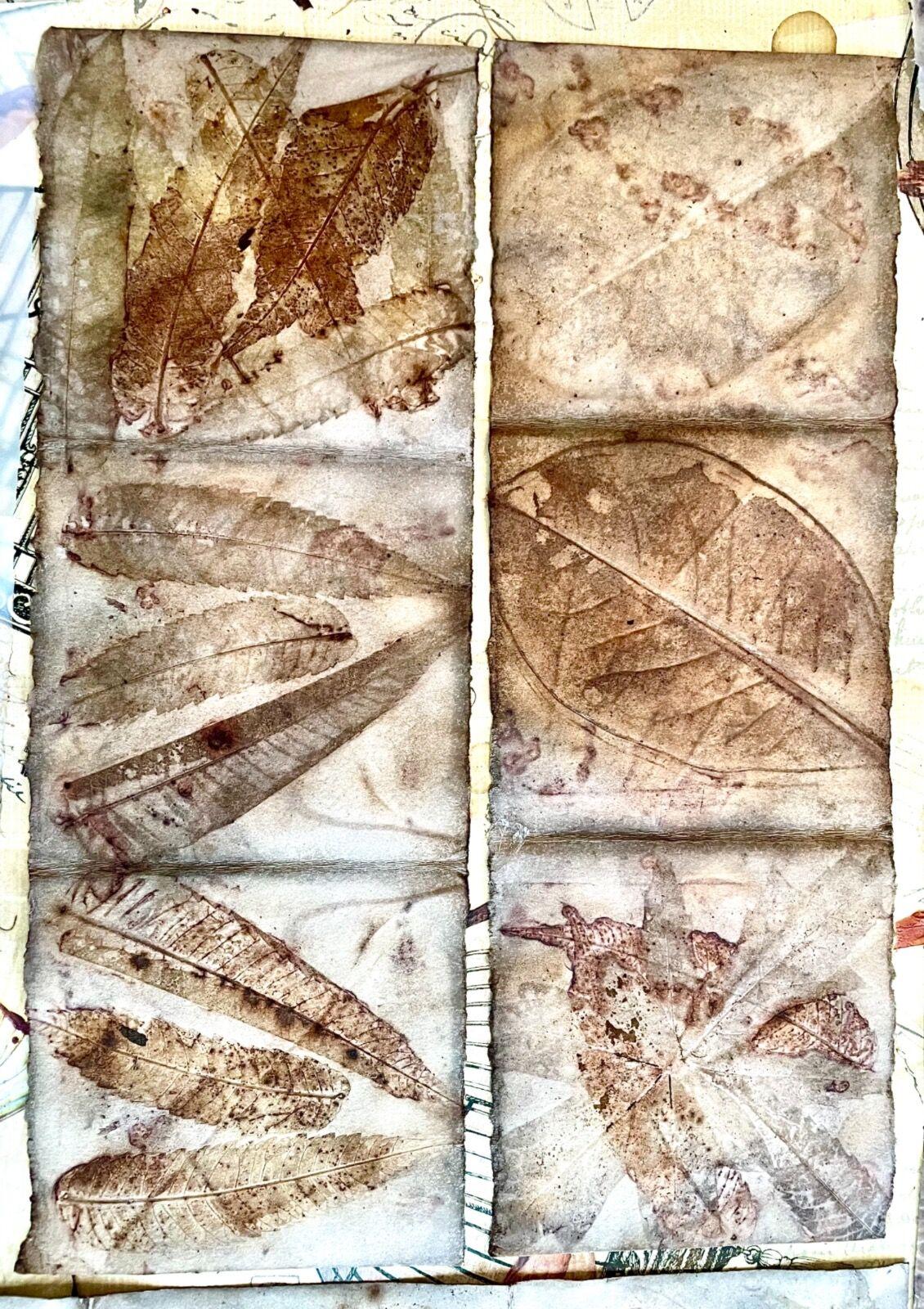 Eco-prints on watercolour paper