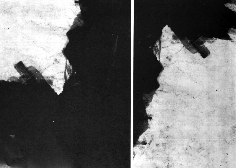 Book of Flight - Digital Print Detail