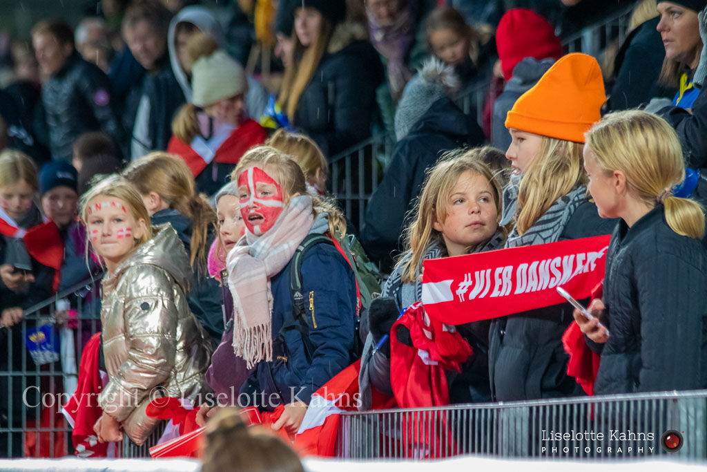 WMS NT, Denmark vs. Bosnia and Herzegovina, Viborg 2019. Excited fans