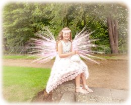 9042-Fairy